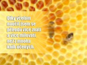 Díky včelám