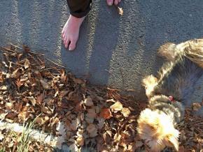 Listopad je letos teplý a tak chodím často bosky #4