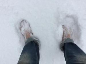 Procházky na sněhu v lednu 2017